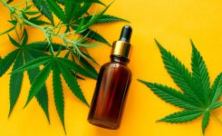 How Hemp Oil Is Great for Hair Health Success